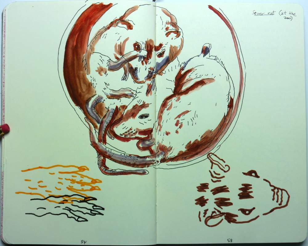 sketchbook_paco_rico_II_15-027
